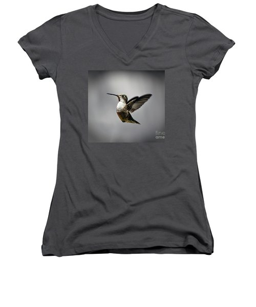 Hummingbird Women's V-Neck T-Shirt