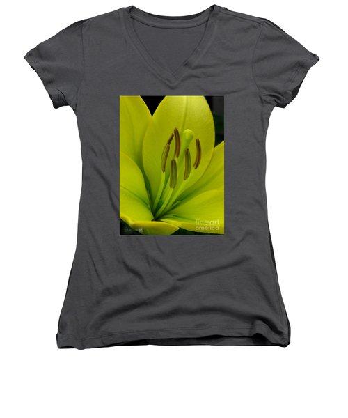 Hybrid Lily Named Trebbiano Women's V-Neck T-Shirt (Junior Cut) by J McCombie
