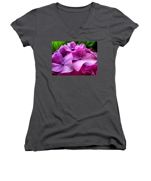 Hydrangea Bliss Women's V-Neck