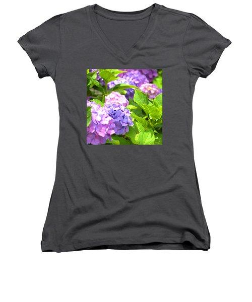 Hydrangeas In The Sun Women's V-Neck T-Shirt (Junior Cut) by Rachel Mirror