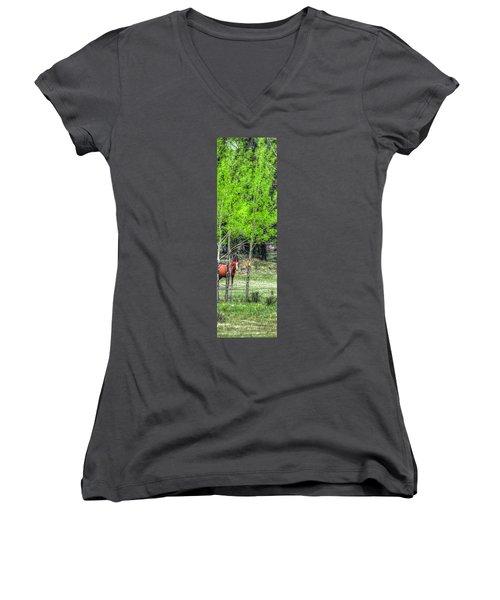 I See You 6172 Women's V-Neck T-Shirt