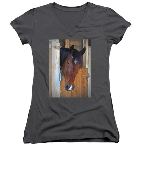 I Was Waiting For You Women's V-Neck T-Shirt (Junior Cut) by Sandi OReilly