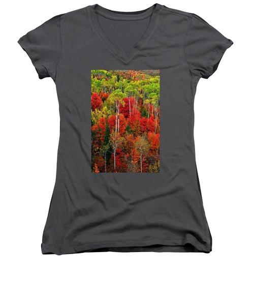 Idaho Autumn Women's V-Neck