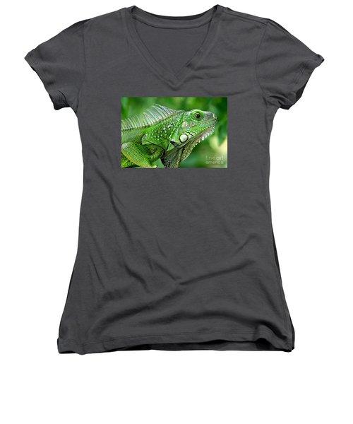Iguana Women's V-Neck