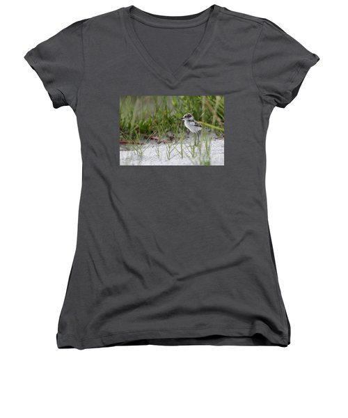 In The Grass - Wilson's Plover Chick Women's V-Neck