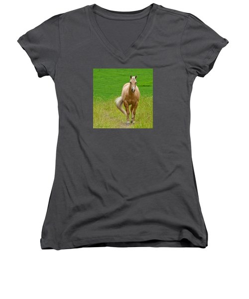 In The Meadow Women's V-Neck T-Shirt (Junior Cut) by Torbjorn Swenelius
