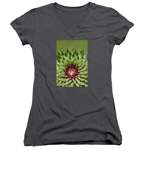 In Thistle's Heart Women's V-Neck T-Shirt (Junior Cut) by Simona Ghidini