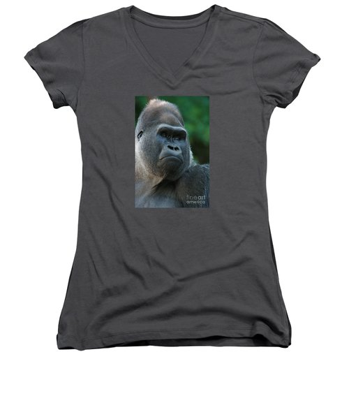 Women's V-Neck T-Shirt (Junior Cut) featuring the photograph Indifference by Judy Whitton