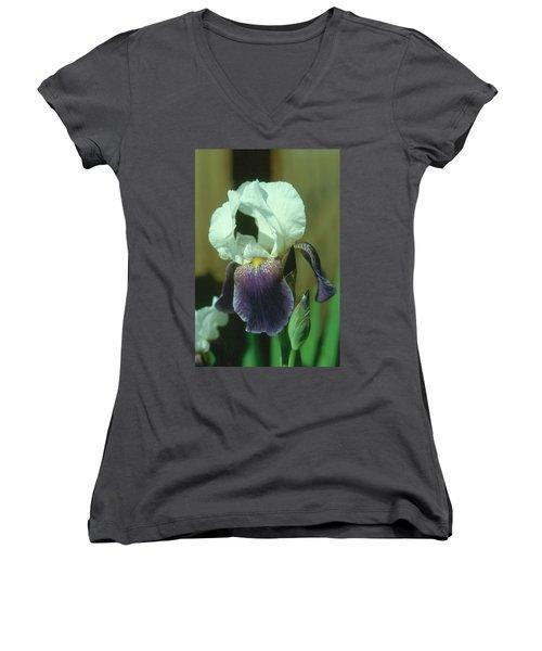 Iris 3 Women's V-Neck T-Shirt
