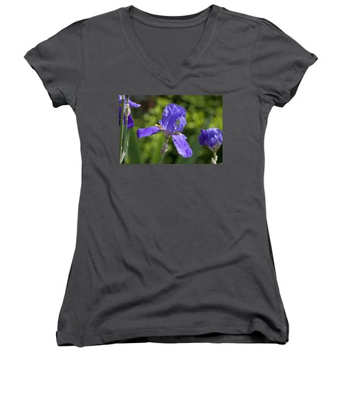 Iris 4 Women's V-Neck T-Shirt (Junior Cut) by Andy Shomock