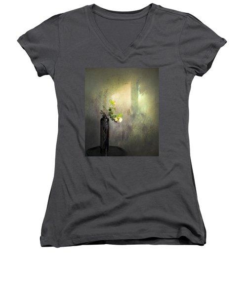 Isn't It Romantic Women's V-Neck T-Shirt (Junior Cut) by Theresa Tahara