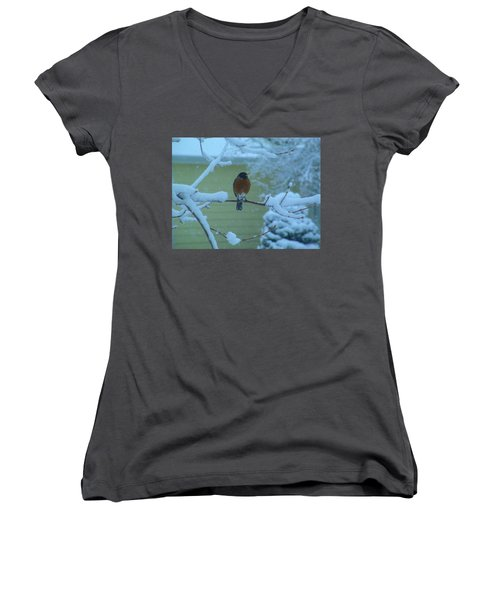 Isn't It Spring Yet? Women's V-Neck (Athletic Fit)