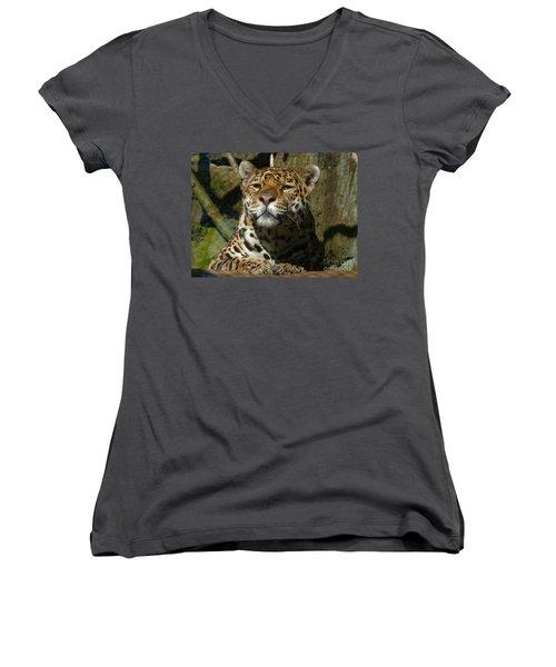 Jaguar Women's V-Neck T-Shirt (Junior Cut) by Phil Banks
