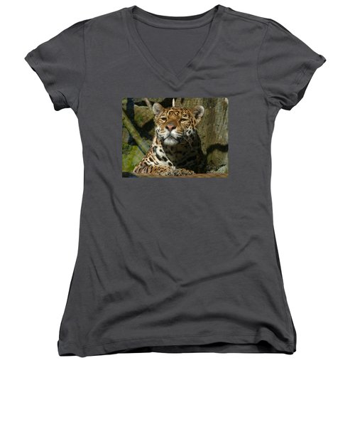 Jaguar Women's V-Neck (Athletic Fit)