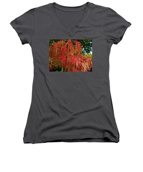 Japanese Maple Women's V-Neck T-Shirt (Junior Cut) by Linda Bianic