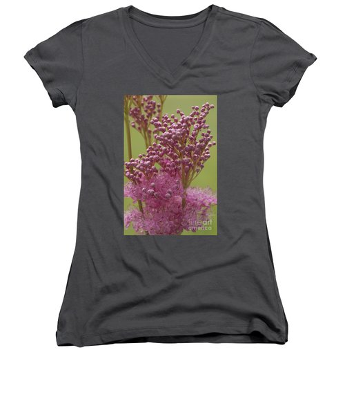 July Astilbe Women's V-Neck T-Shirt