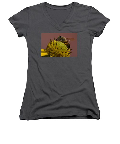 Just Bee Women's V-Neck (Athletic Fit)