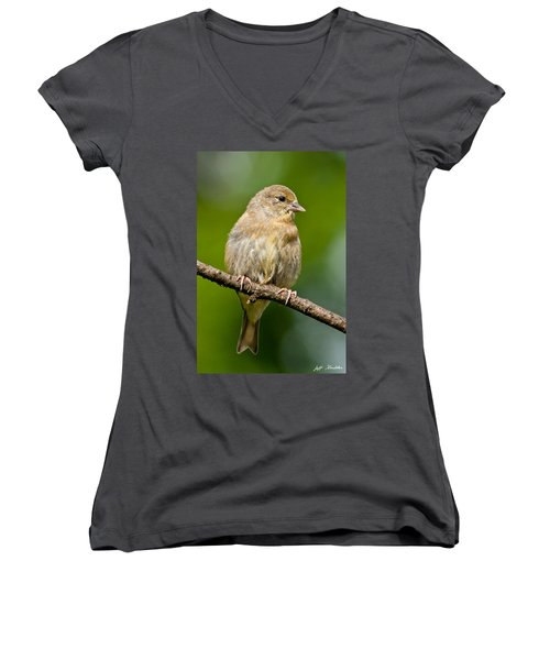 Juvenile American Goldfinch Women's V-Neck (Athletic Fit)
