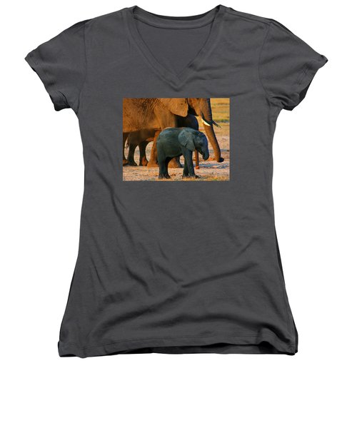 Women's V-Neck T-Shirt (Junior Cut) featuring the photograph Kalahari Elephants by Amanda Stadther