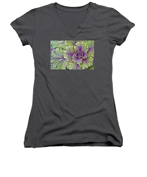Kale Plant In The Rain Women's V-Neck (Athletic Fit)