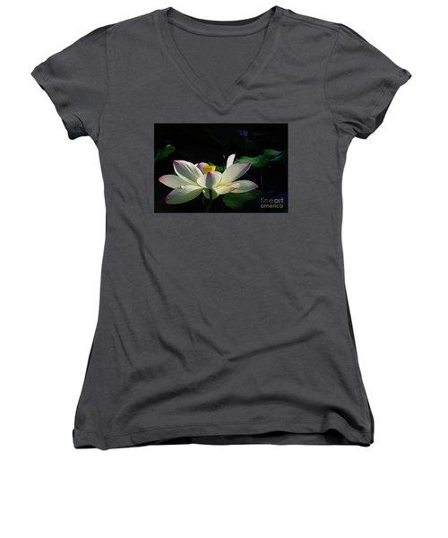 Women's V-Neck T-Shirt (Junior Cut) featuring the photograph Kenilworth Garden Two by John S