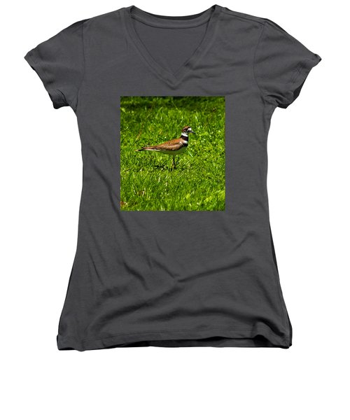 Killdeer Charadrius Vociferus 2 Women's V-Neck T-Shirt (Junior Cut) by Howard Tenke
