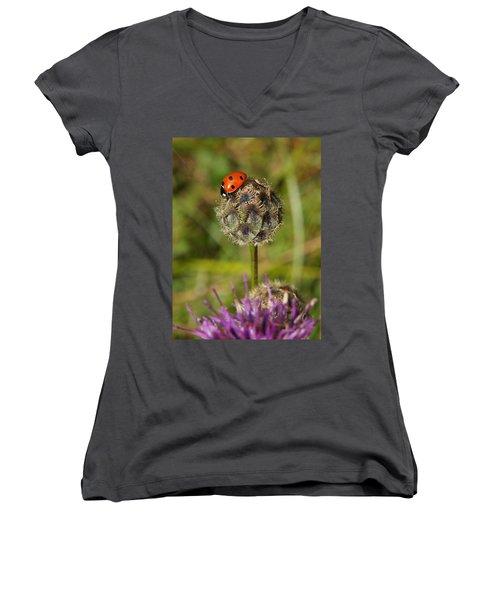 Ladybird Women's V-Neck T-Shirt (Junior Cut) by Ron Harpham