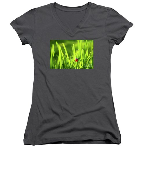 Ladybug In Grass Women's V-Neck T-Shirt (Junior Cut) by Carlos Caetano