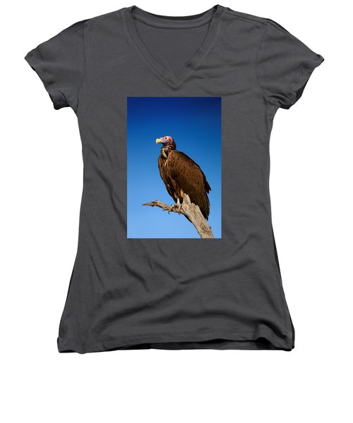Lappetfaced Vulture Against Blue Sky Women's V-Neck T-Shirt (Junior Cut) by Johan Swanepoel
