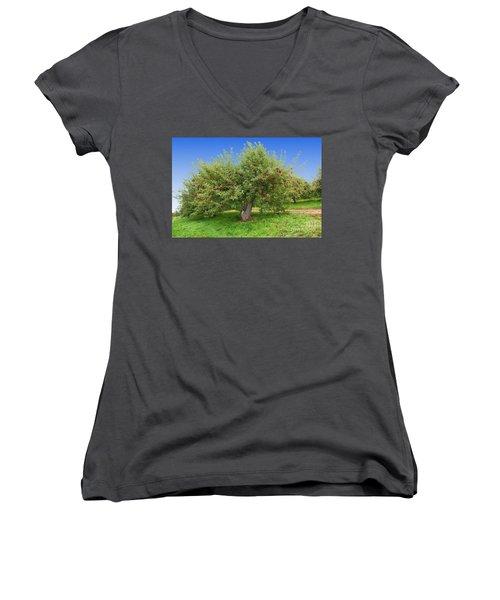 Large Apple Tree Women's V-Neck