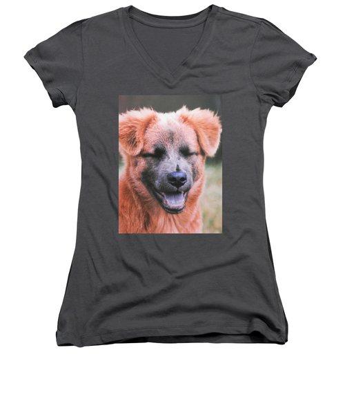 Laughing Dog Women's V-Neck T-Shirt (Junior Cut) by Belinda Lee