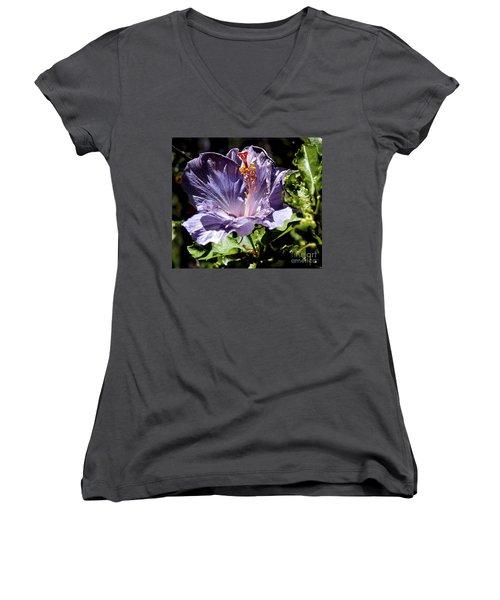 Lavender Hibiscus Women's V-Neck