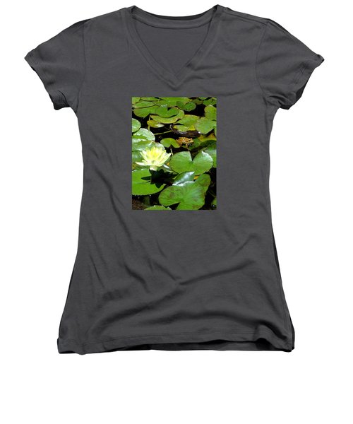 Lily And Amphibian Friend Women's V-Neck (Athletic Fit)