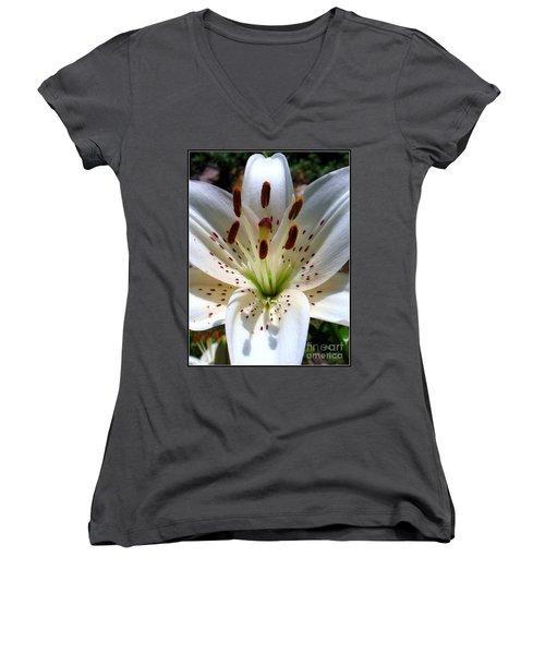 Lily Women's V-Neck T-Shirt (Junior Cut) by Patti Whitten