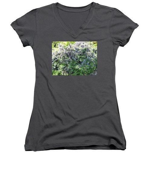 Lincoln Park In Bloom Women's V-Neck T-Shirt