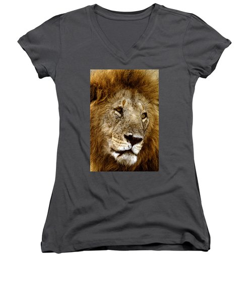 Lion 01 Women's V-Neck T-Shirt (Junior Cut) by Wally Hampton