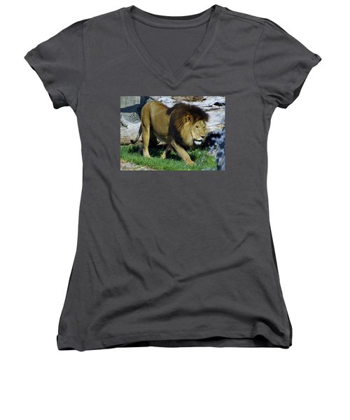 Lion 1 Women's V-Neck (Athletic Fit)