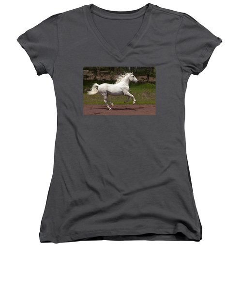 Lipizzan At Liberty Women's V-Neck T-Shirt (Junior Cut) by Wes and Dotty Weber