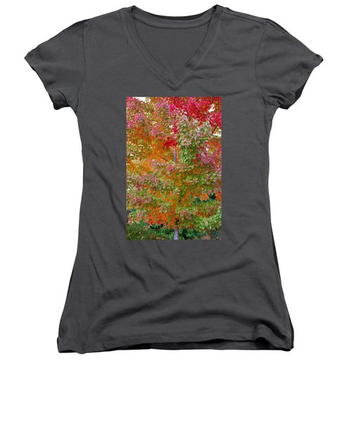 Liquid Amber Magic Women's V-Neck T-Shirt (Junior Cut) by Michele Myers