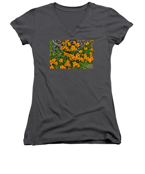 Women's V-Neck T-Shirt (Junior Cut) featuring the photograph Little Sunflower In The Mountains by Janice Rae Pariza