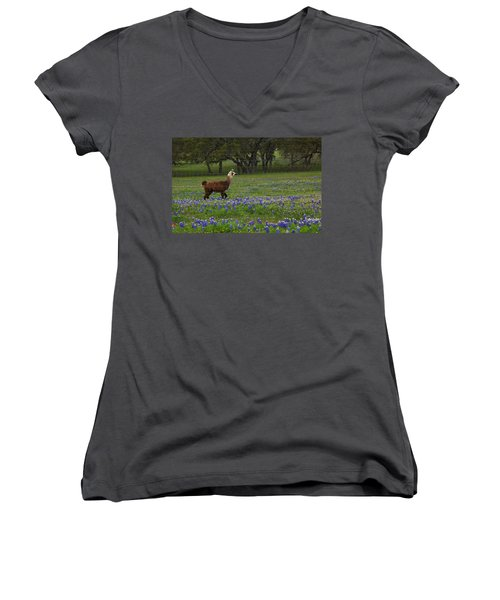 Llama In Bluebonnets Women's V-Neck T-Shirt (Junior Cut) by Susan Rovira