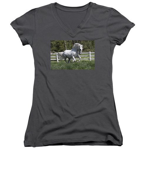Loose In The Paddock Women's V-Neck T-Shirt (Junior Cut) by Wes and Dotty Weber