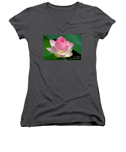 Lotus 7152010 Women's V-Neck T-Shirt