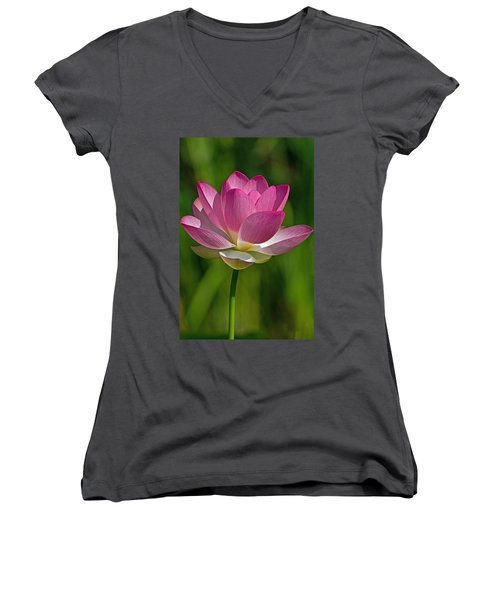Women's V-Neck T-Shirt (Junior Cut) featuring the photograph Lotus Bloom by Jerry Gammon