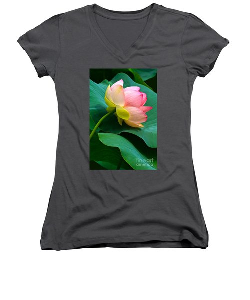 Lotus Blossom And Leaves Women's V-Neck (Athletic Fit)