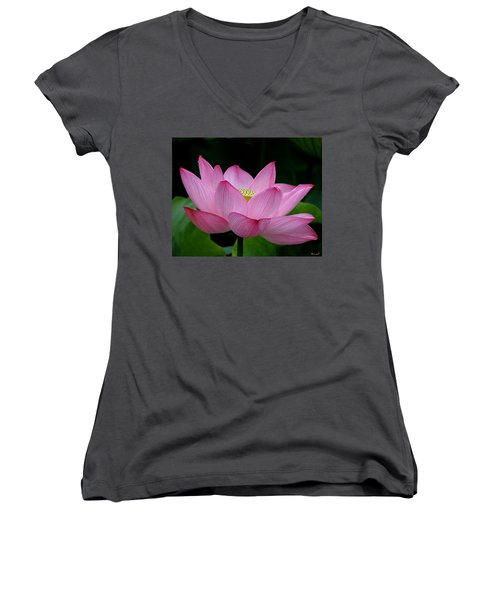 Lotus-center Of Being IIi Dl033 Women's V-Neck (Athletic Fit)
