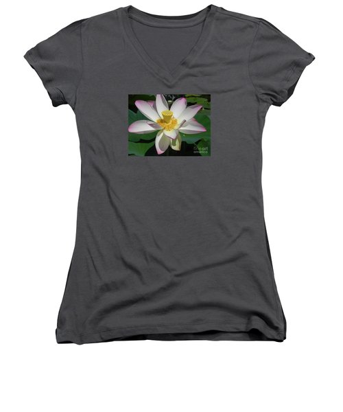 Women's V-Neck T-Shirt (Junior Cut) featuring the photograph Lotus Flower by Chrisann Ellis