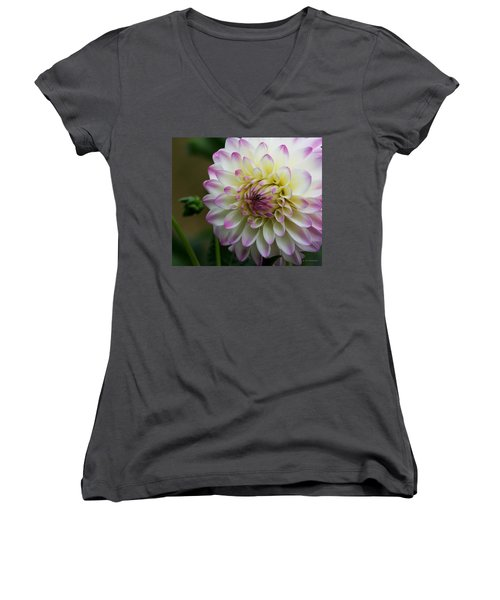 Loving You Women's V-Neck T-Shirt (Junior Cut) by Jeanette C Landstrom