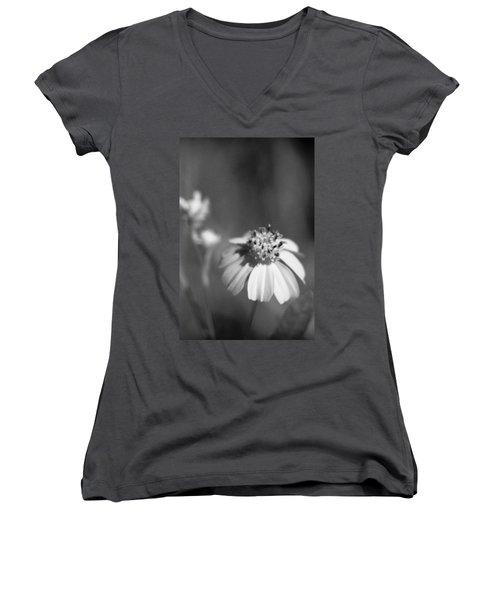 Loxahatchee Flower Women's V-Neck T-Shirt (Junior Cut) by Bradley R Youngberg