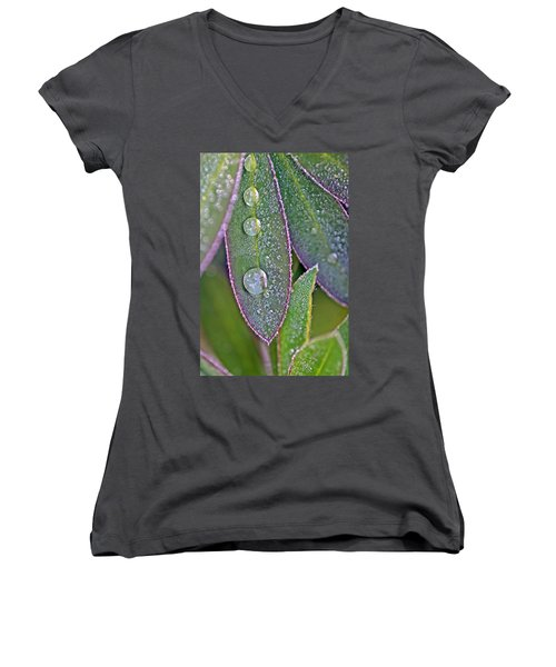 Lupin Leaves And Waterdrops Women's V-Neck (Athletic Fit)